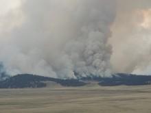 Thompson Ridge Fire landscape
