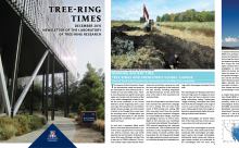Pages from the current issue of the Tree-Ring Times newsletter