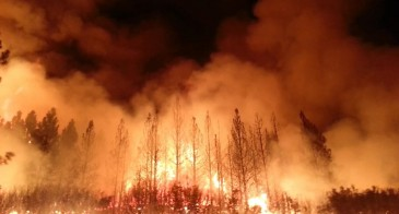 Rim Fire near Yosemite Nationa Park, California